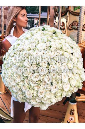 201 белая роза 60 cм.
