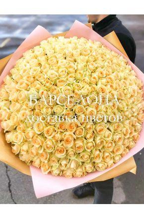 201 кремовая роза 60 см.