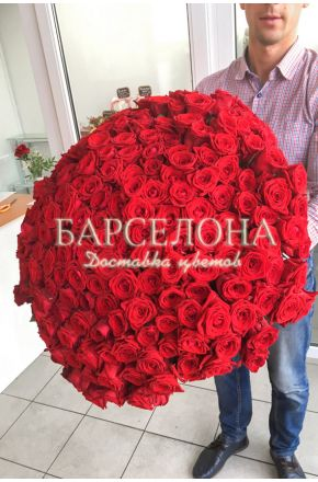 201 Красная роза 60 cм.
