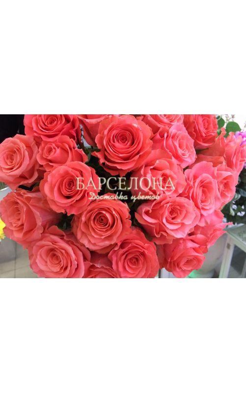 25 Розовых роз Amsterdam (Эквадор)