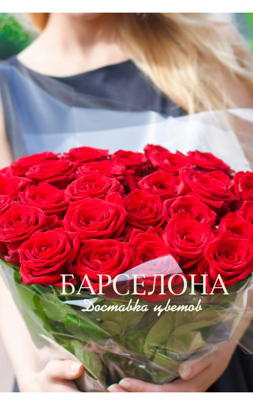 25 Красных роз c крупным бутоном