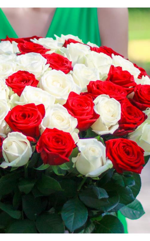 25 Красно-белых роз
