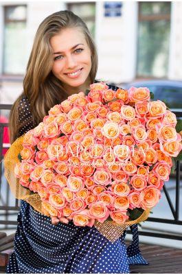 101 Роза сорта Мисс Пигги 50 см.