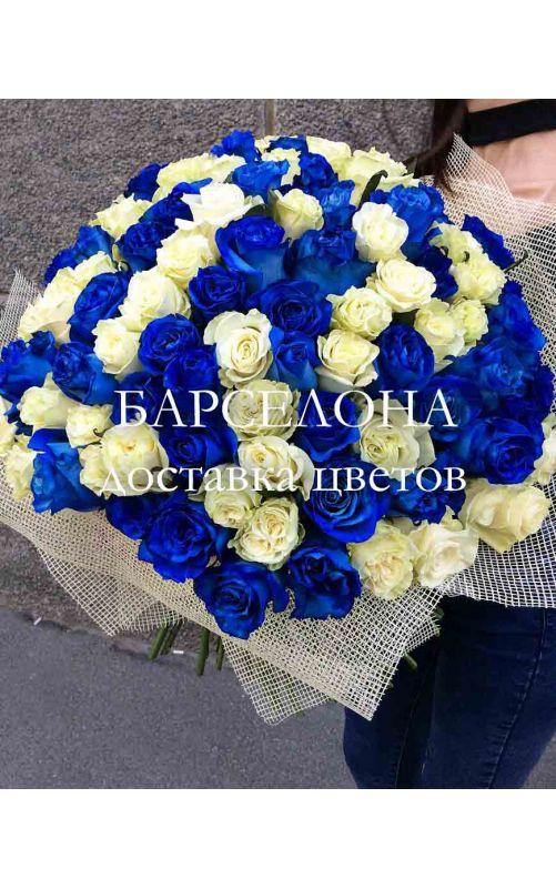 51 синяя и белая роза