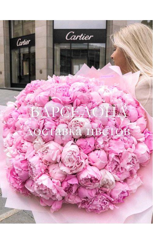 Букет из 101 розового пиона Сара Бернар