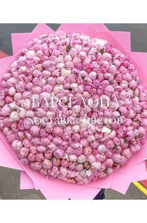 Букет из 301 розового пиона Сара Бернар