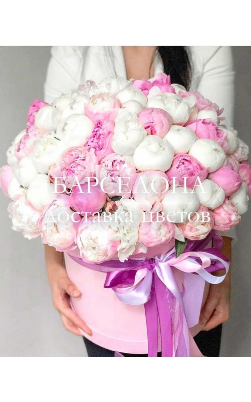 Шляпная коробка из 51 белого и розового пиона