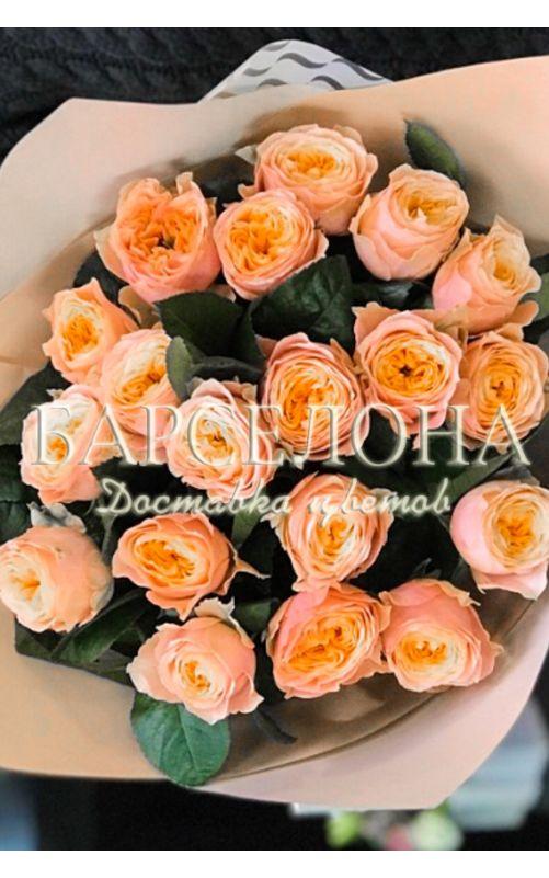 Букет из 19 пионовидных роз Вувузела
