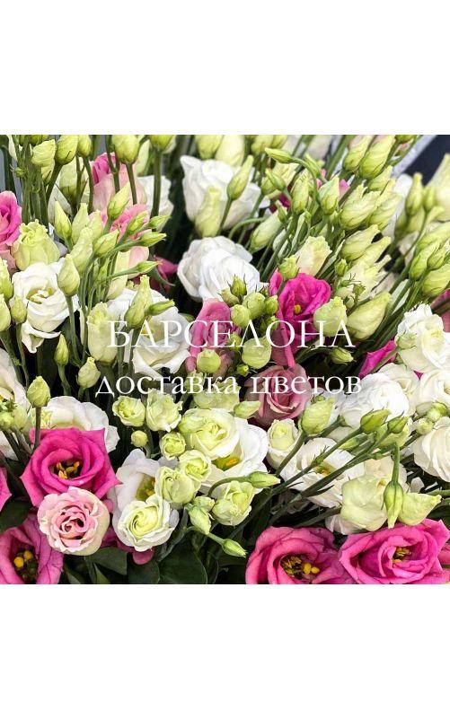 Букет из 19 белых и розовых Эустом