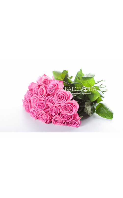 Розовая роза Аква 60 см.