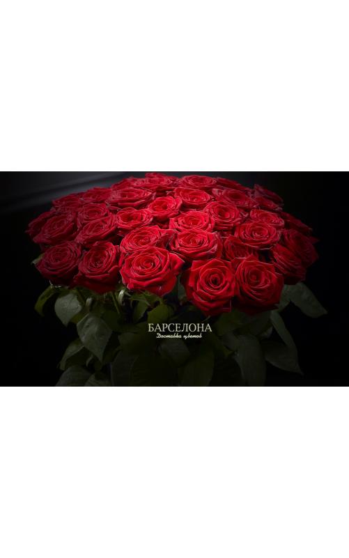 Красная роза Ред Наоми 60 см.