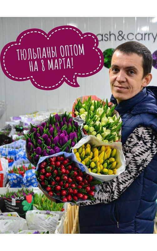 Тюльпаны россыпью от 100-199 шт.