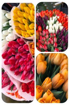 Тюльпаны россыпью от 600 шт.