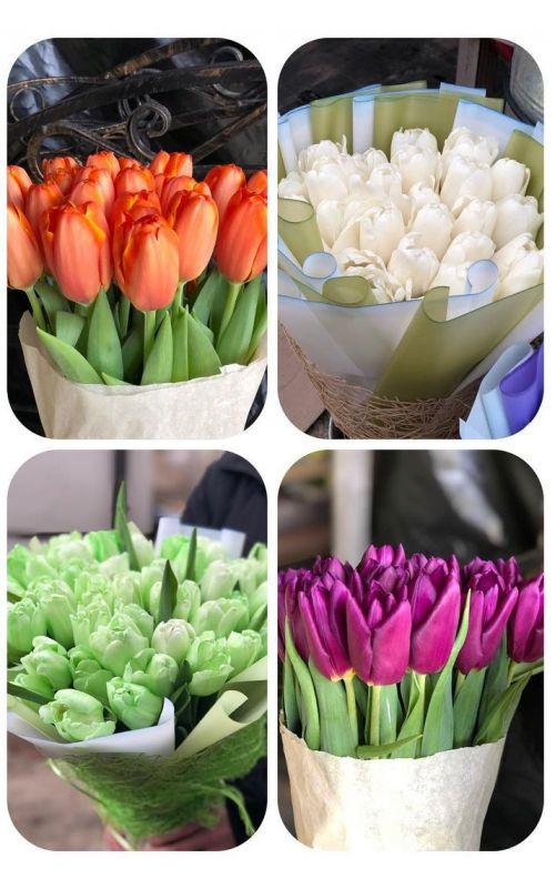 Тюльпаны россыпью от 400 шт.