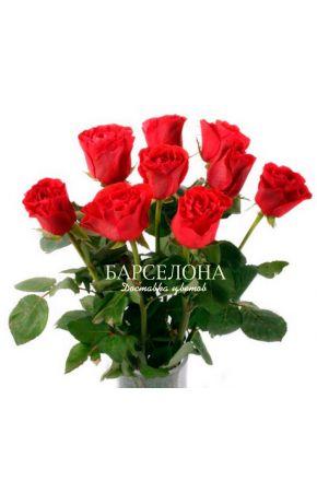 Красная роза (Кения) оптом