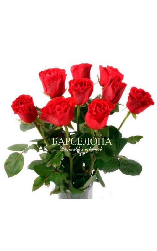 Красная роза (Кения)