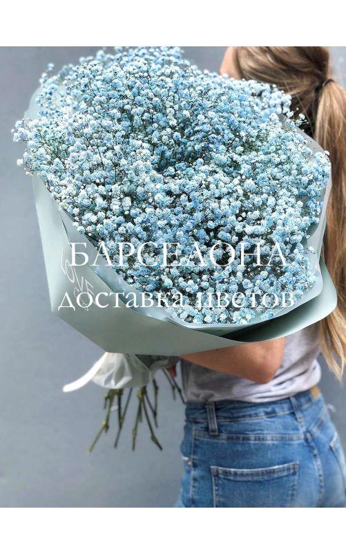 Букет из 15 нежно-голубых гипсофил