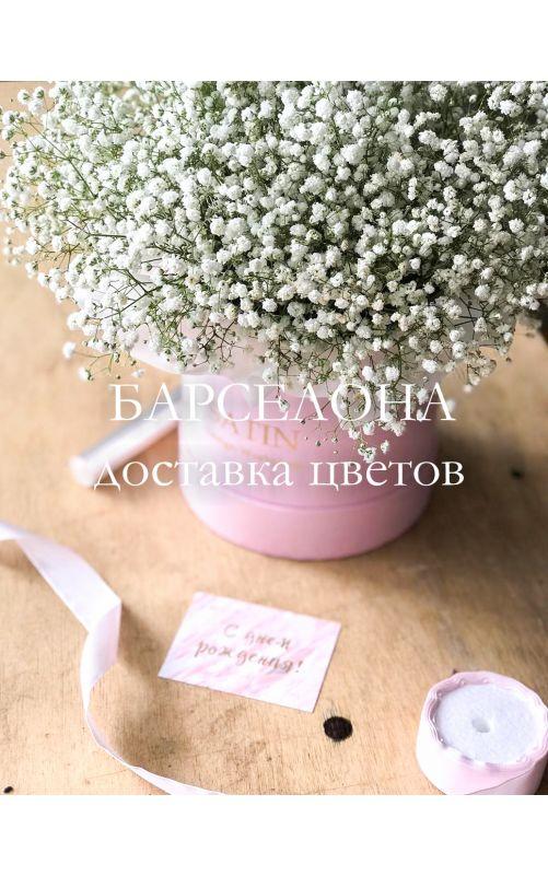 Белая гисофила в розовой коробке mini