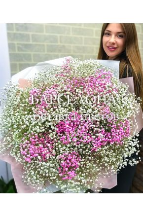 Букет из 25 розовых и белых гипсофил