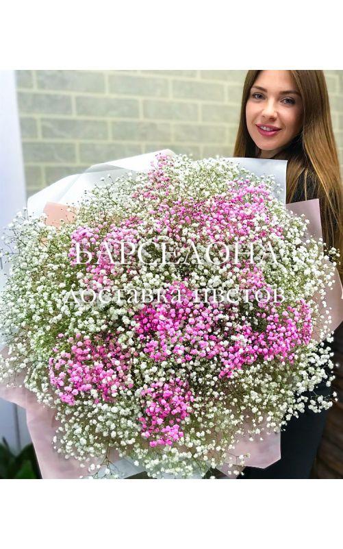 Букет 25 розовых и белых гипсофил