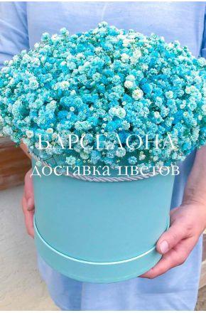 Голубая гисофила в шляпной коробке XL