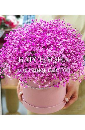 Розовая гисофила в шляпной коробке XL