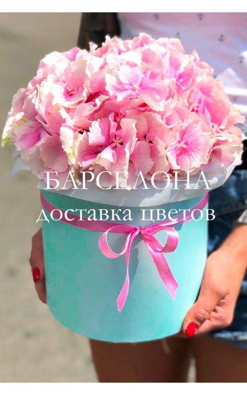 Розовая гортензия в бирюзовой коробке
