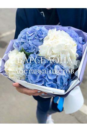 Букет из 5 синих и белых гортензий