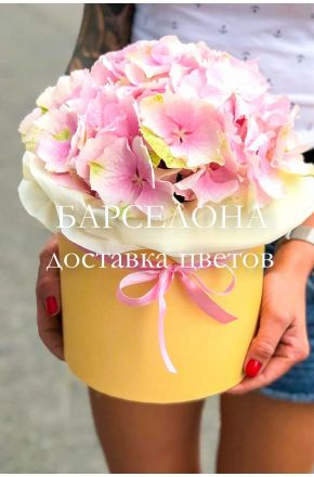 Розовая гортензия в кремовой коробке
