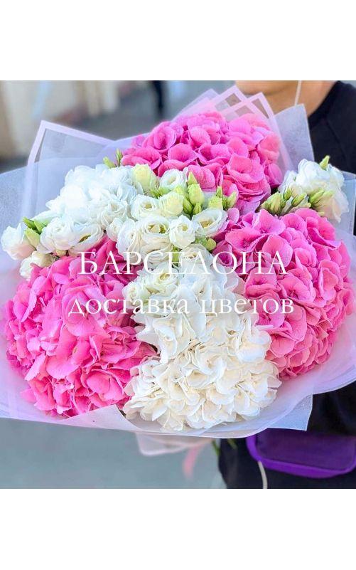 Букет из 5 белых и розовых гортензий и Эустомы