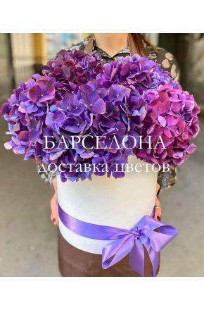 Шляпная коробка из 5 темно-фиолетовых гортензий