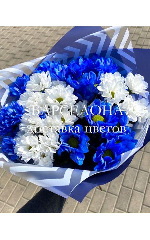 Букет из 7 синих и белых хризантемы