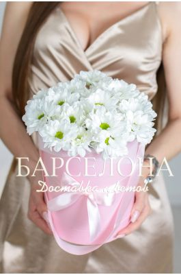 5 белых хризантем в розовой шляпной коробке