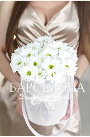 5 белых хризантем в белой шляпной коробке