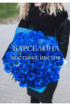 Букет из 15 синих хризантем