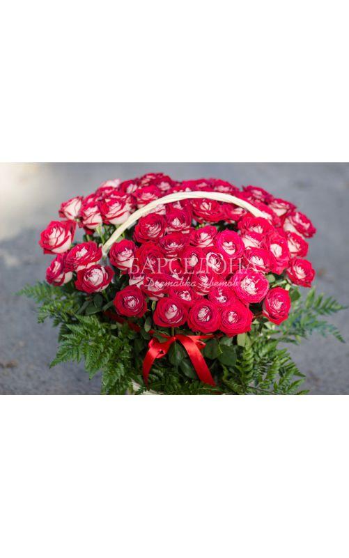 51 роза Дип Вотер 60 cм.