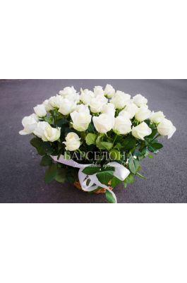 25 белых роз с зеленью 60 см.