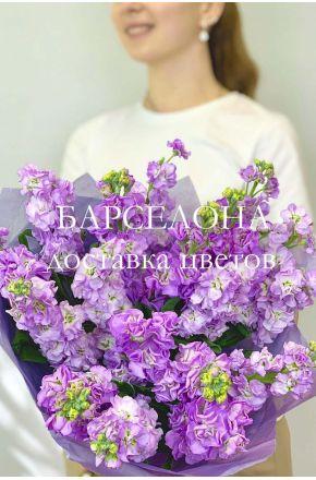 Букет из 19 фиолетовых маттиол