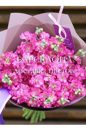 Букет из 19 розовых маттиол