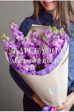 Букет из 9 фиолетовых маттиол