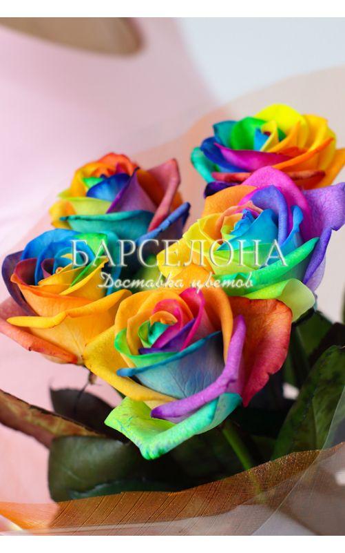 5 радужных роз