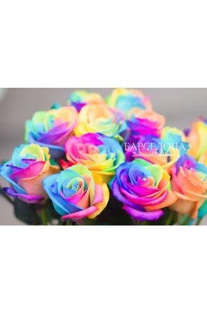 Радужные розы оптом