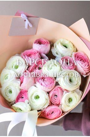 Букет из 19 белых и розовых ранункулюсов
