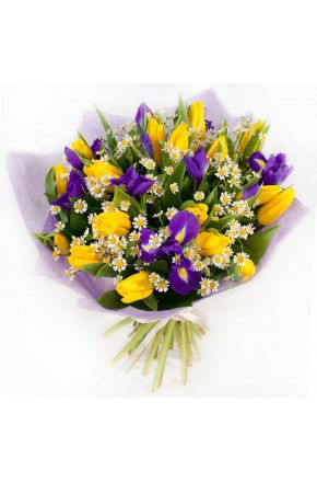 Букет из 25 тюльпанов ромашек и ирисов